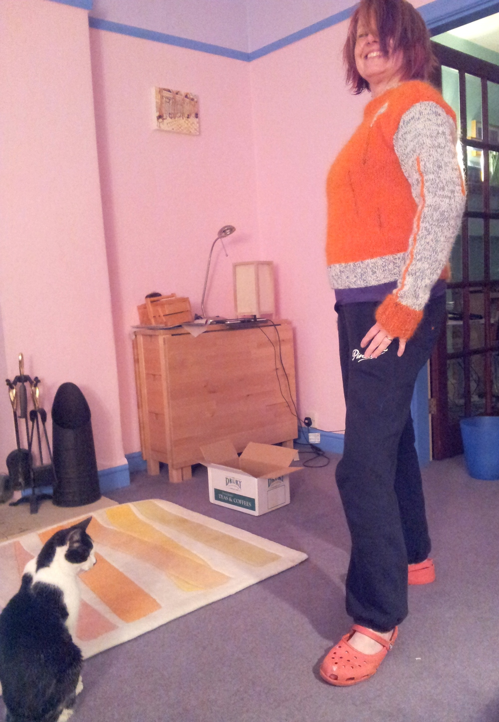 Cat casts a critical eye over the new jumper.