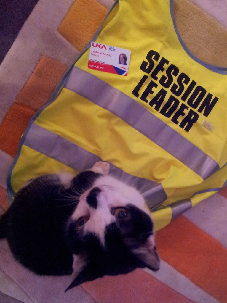 There I was, setting up an arty photo to show off my coaching badge and Cat decided to get in on the act. Good grief.