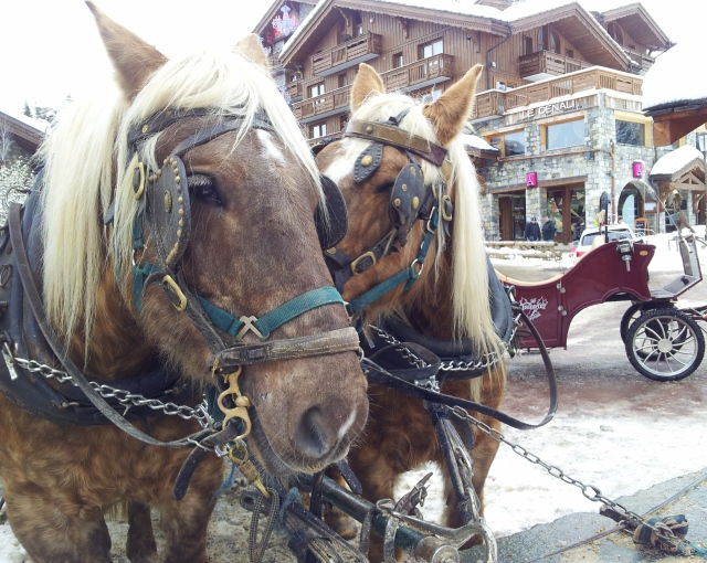 Deux chevaux et une caleche (two horses and a carriage)