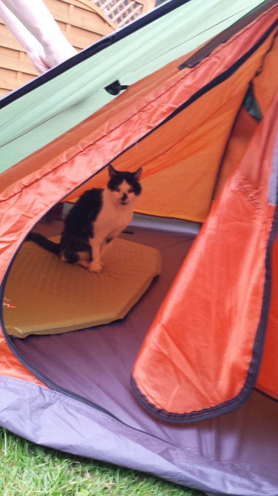 One keen camper