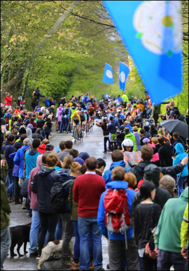 Keep the Yorkshire flags flying, Tour de Yorkshire 2015